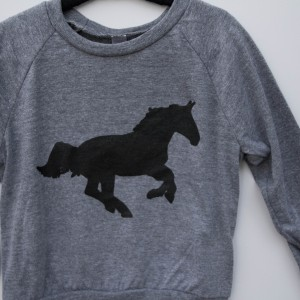 Running Horse Toddler and Youth Pullover 5
